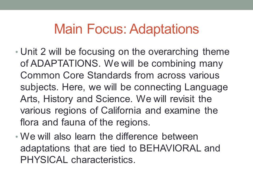 Main Focus: Adaptations