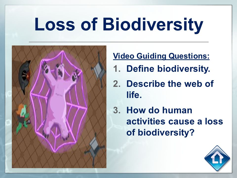 Loss of Biodiversity Define biodiversity. Describe the web of life.