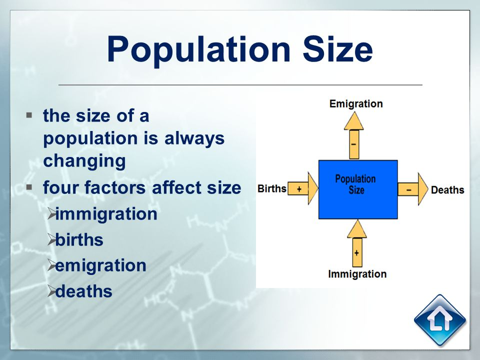 Population Size the size of a population is always changing