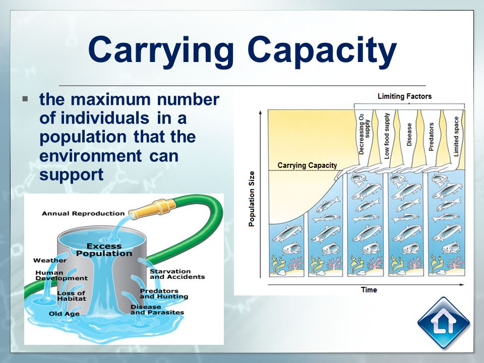 Carrying Capacity the maximum number of individuals in a population that the environment can support.