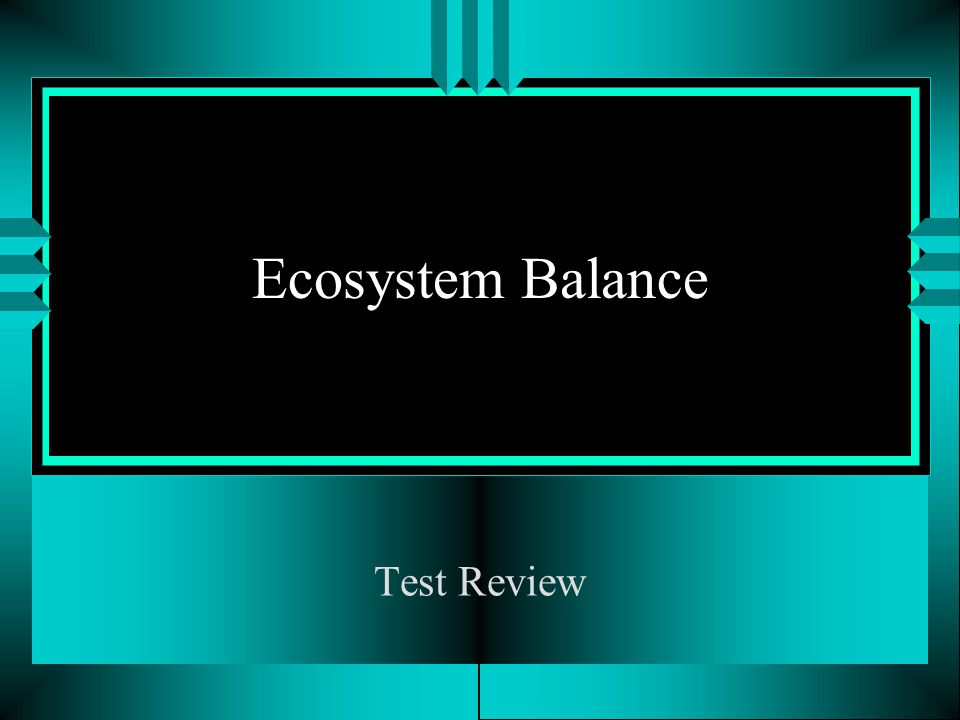 Ecosystem Balance Test Review