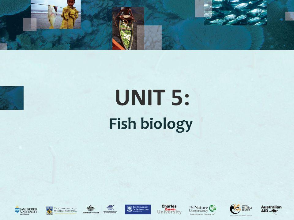 UNIT 5: Fish biology
