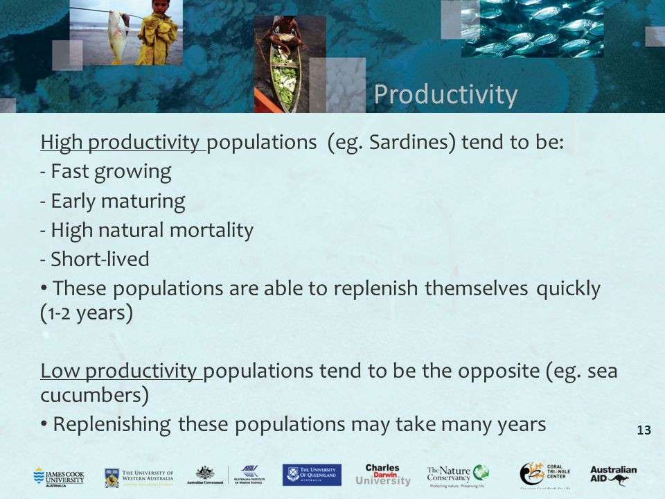 Productivity High productivity populations (eg. Sardines) tend to be: