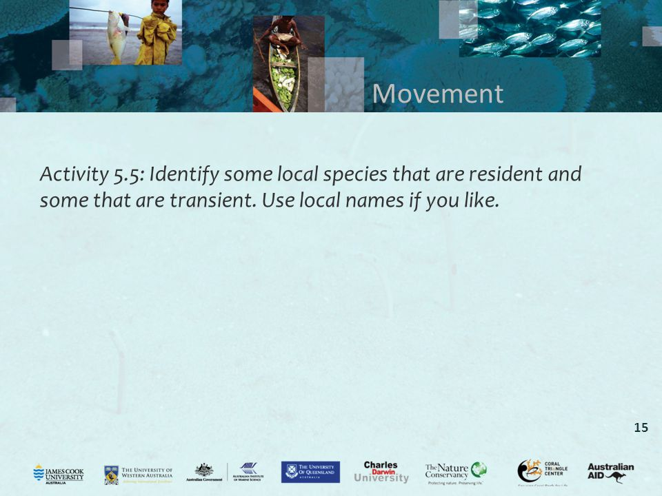 Movement Activity 5.5: Identify some local species that are resident and some that are transient.