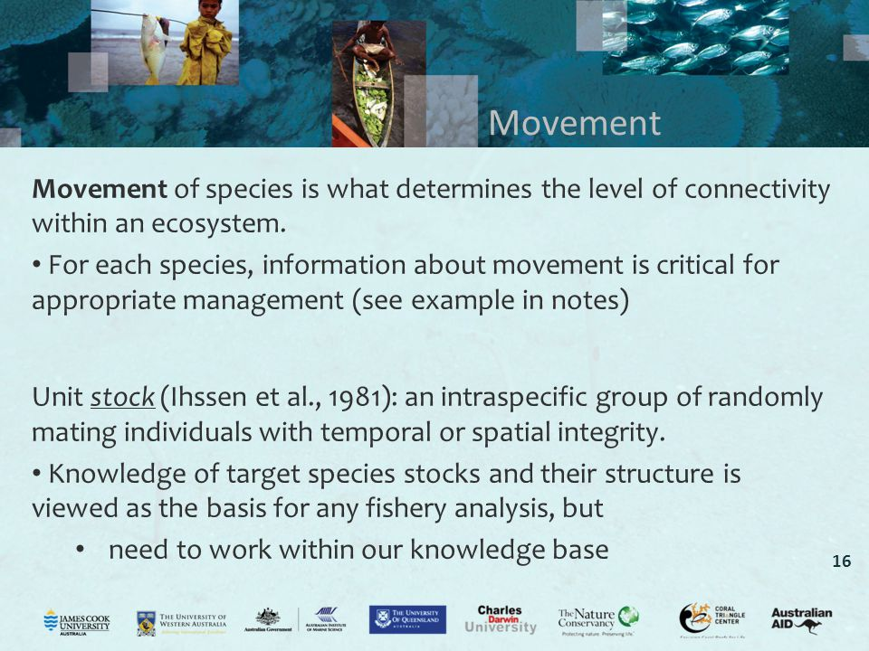 Movement Movement of species is what determines the level of connectivity within an ecosystem.