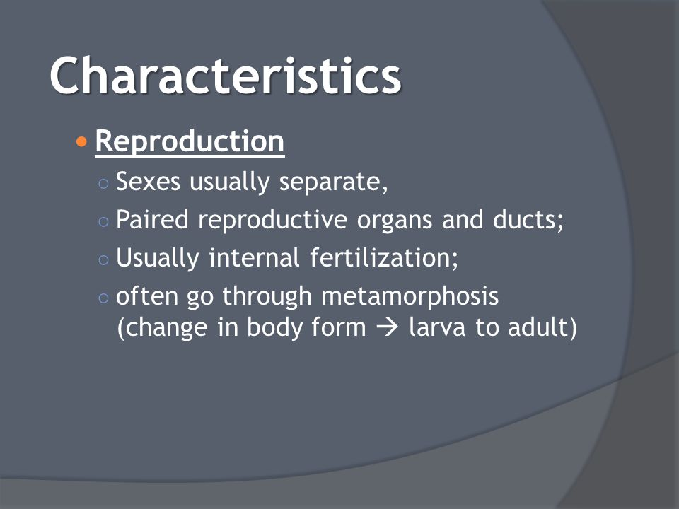 Characteristics Reproduction Sexes usually separate,