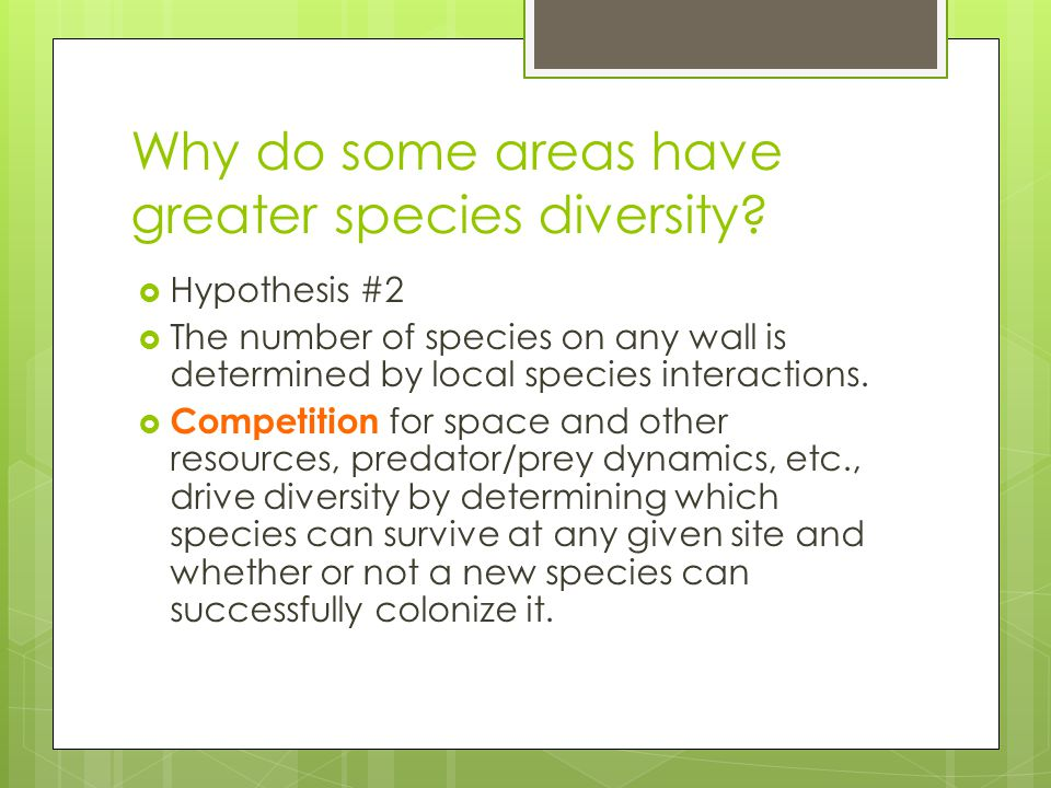 Why do some areas have greater species diversity