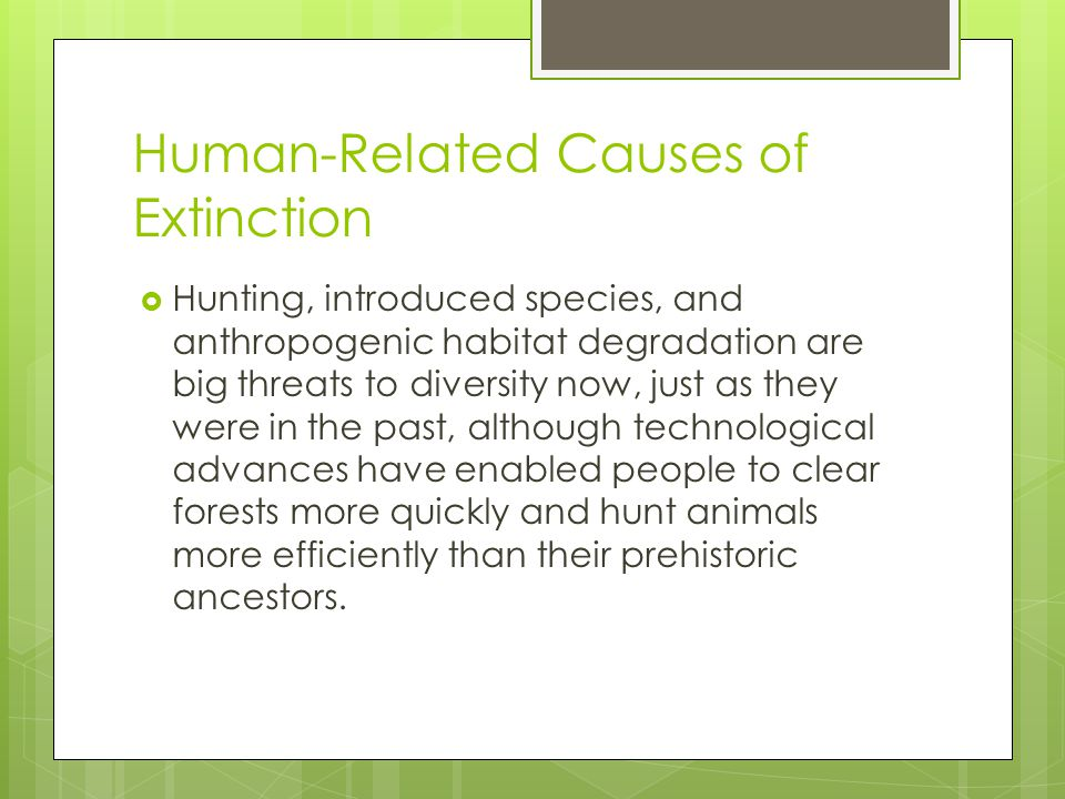 Human-Related Causes of Extinction