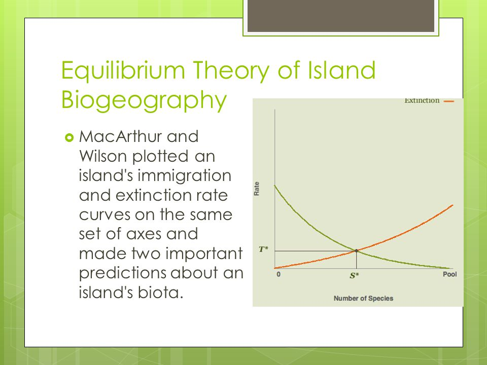 Equilibrium Theory of Island Biogeography
