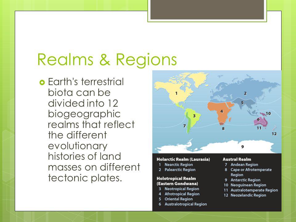 Realms & Regions