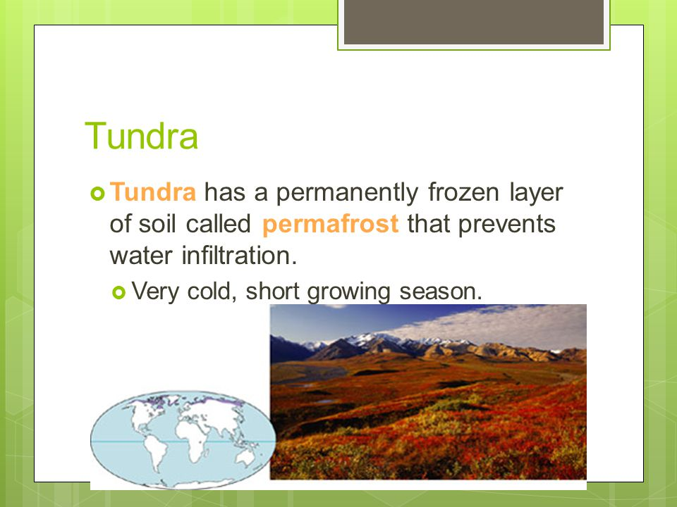 Tundra Tundra has a permanently frozen layer of soil called permafrost that prevents water infiltration.