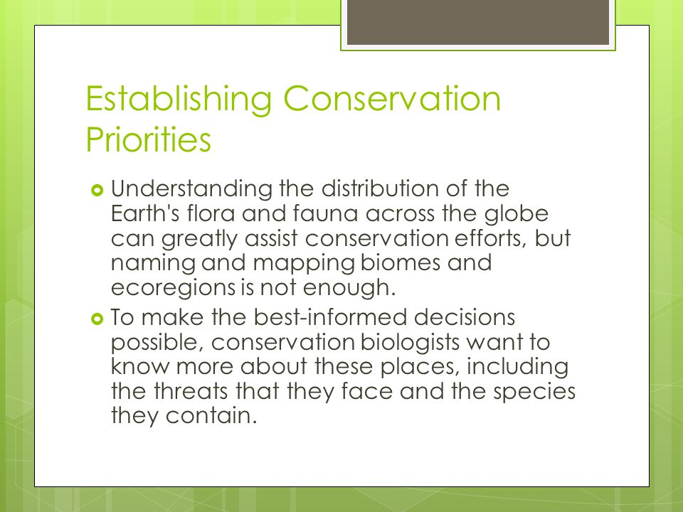 Establishing Conservation Priorities
