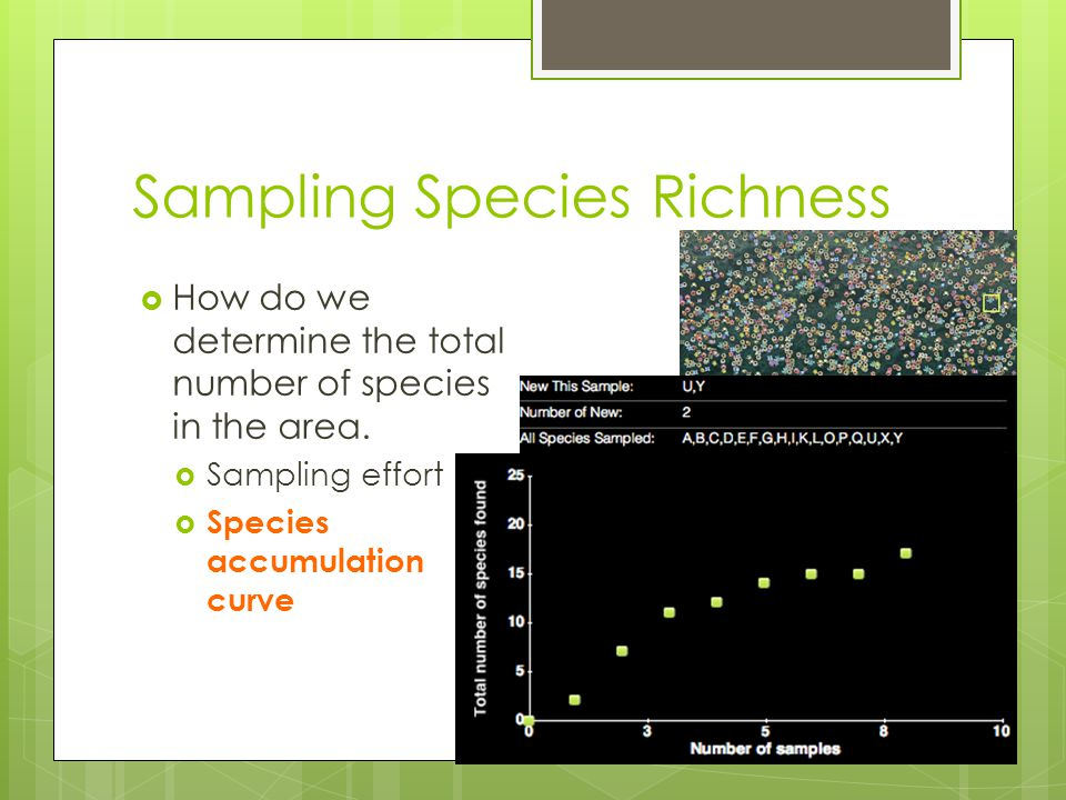 Sampling Species Richness