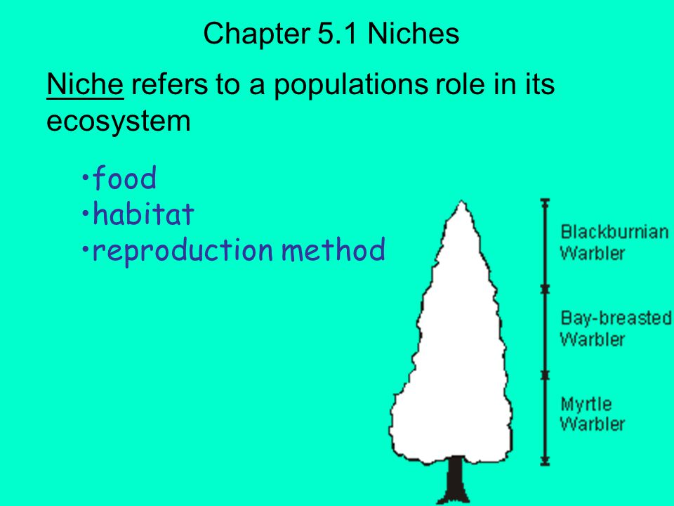 Niche refers to a populations role in its ecosystem
