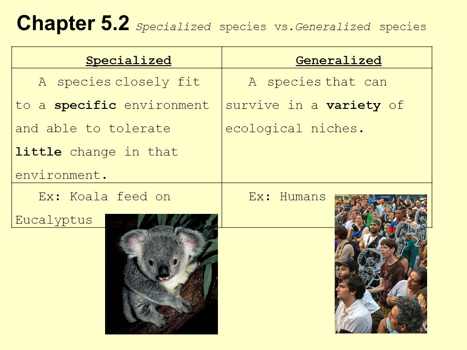 Chapter 5.2 Specialized species vs.Generalized species