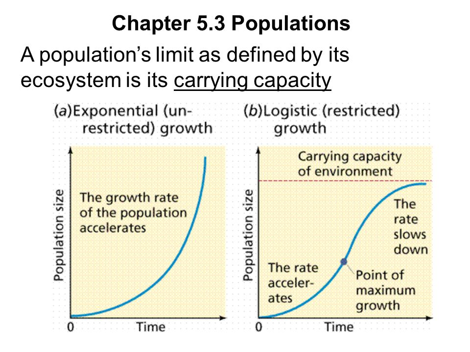 Chapter 5.3 Populations A population's limit as defined by its ecosystem is its carrying capacity