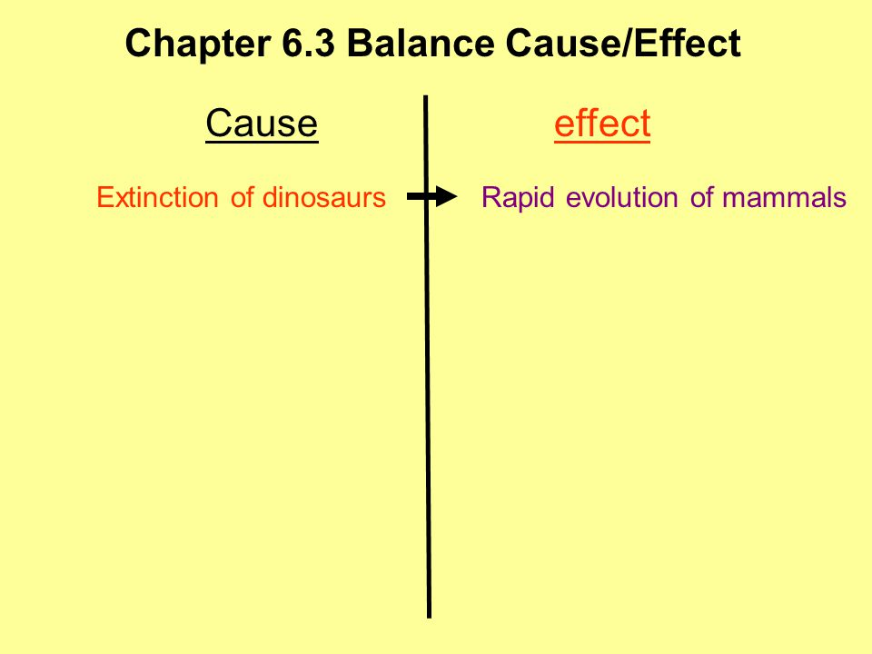 Chapter 6.3 Balance Cause/Effect