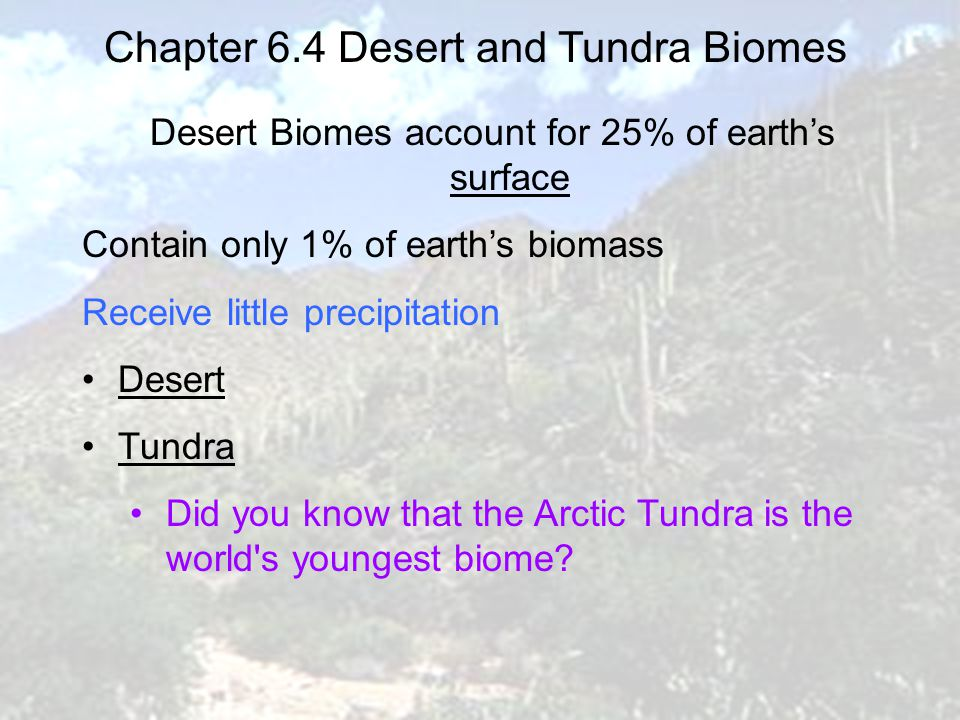 Chapter 6.4 Desert and Tundra Biomes