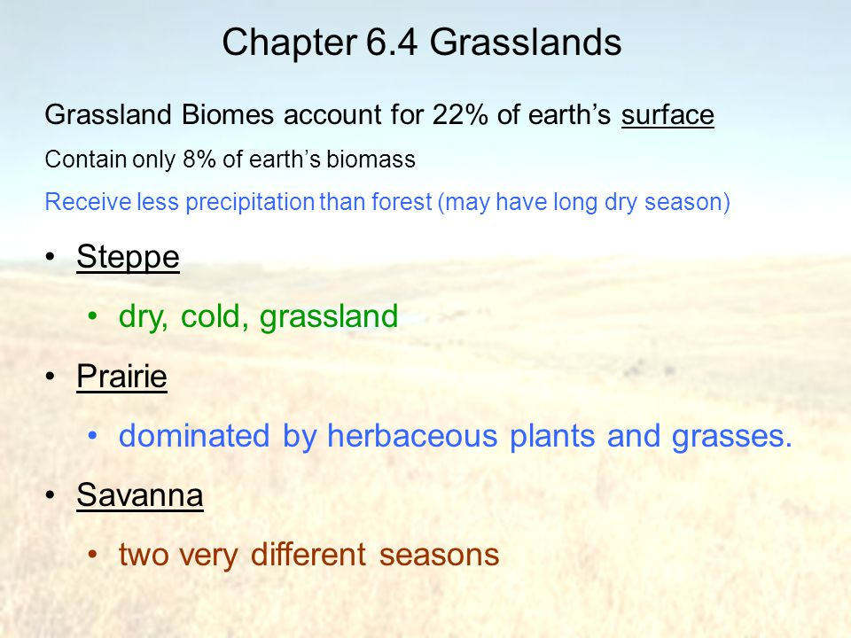 Chapter 6.4 Grasslands Steppe dry, cold, grassland Prairie