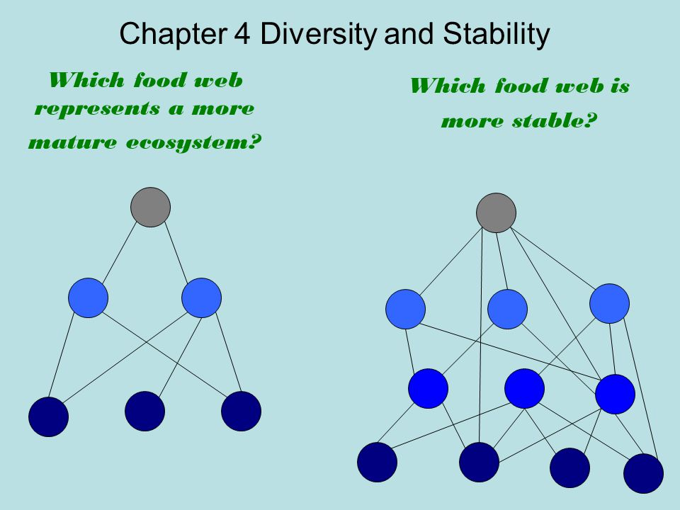Chapter 4 Diversity and Stability