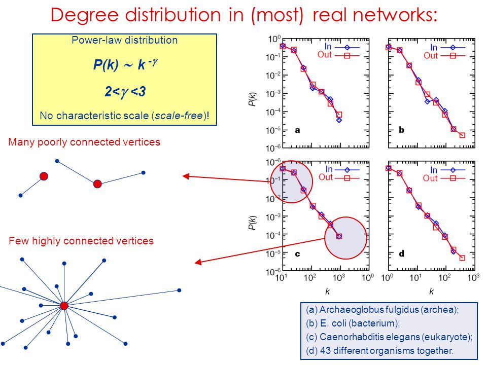 Degree distribution in (most) real networks: