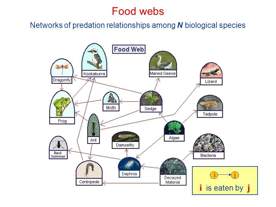 Networks of predation relationships among N biological species