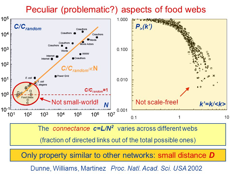 Peculiar (problematic ) aspects of food webs