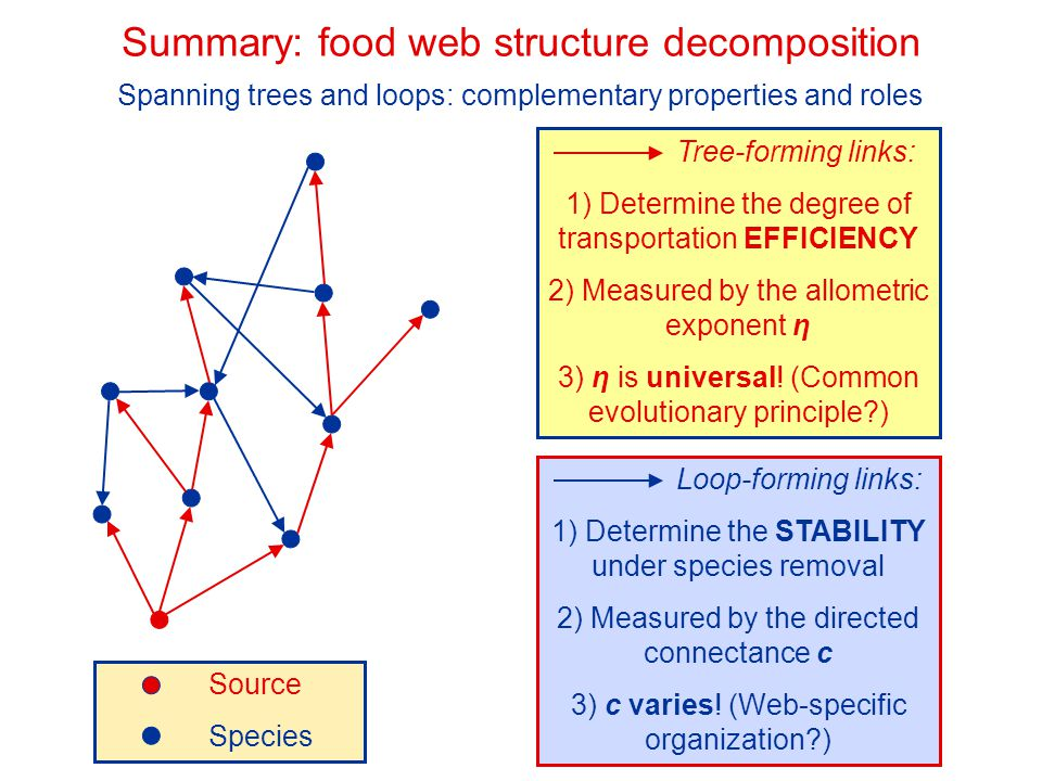 Summary: food web structure decomposition