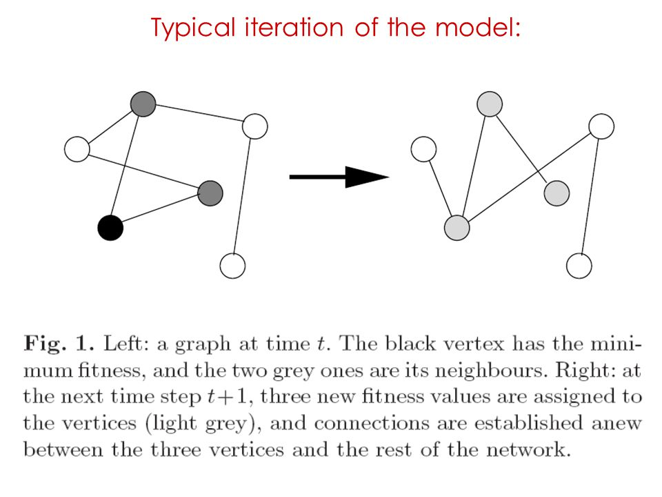 Typical iteration of the model: