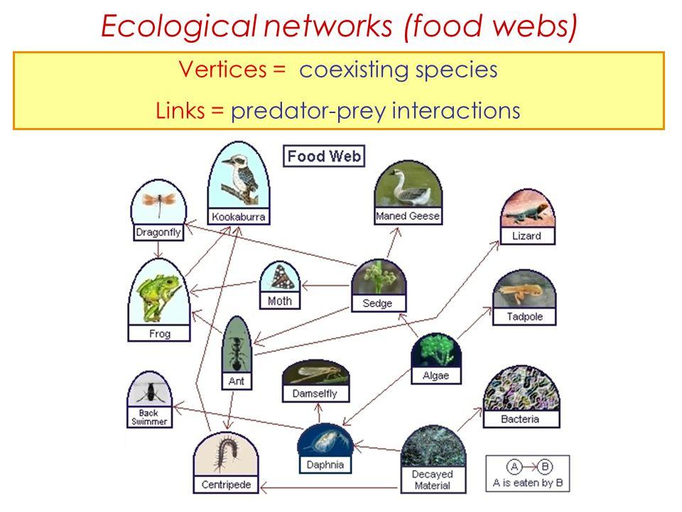 Ecological networks (food webs)