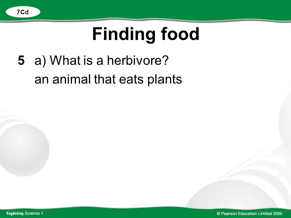 7Cd Finding food 5 a) What is a herbivore an animal that eats plants