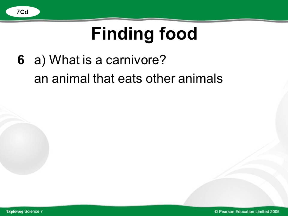 Finding food 6 a) What is a carnivore