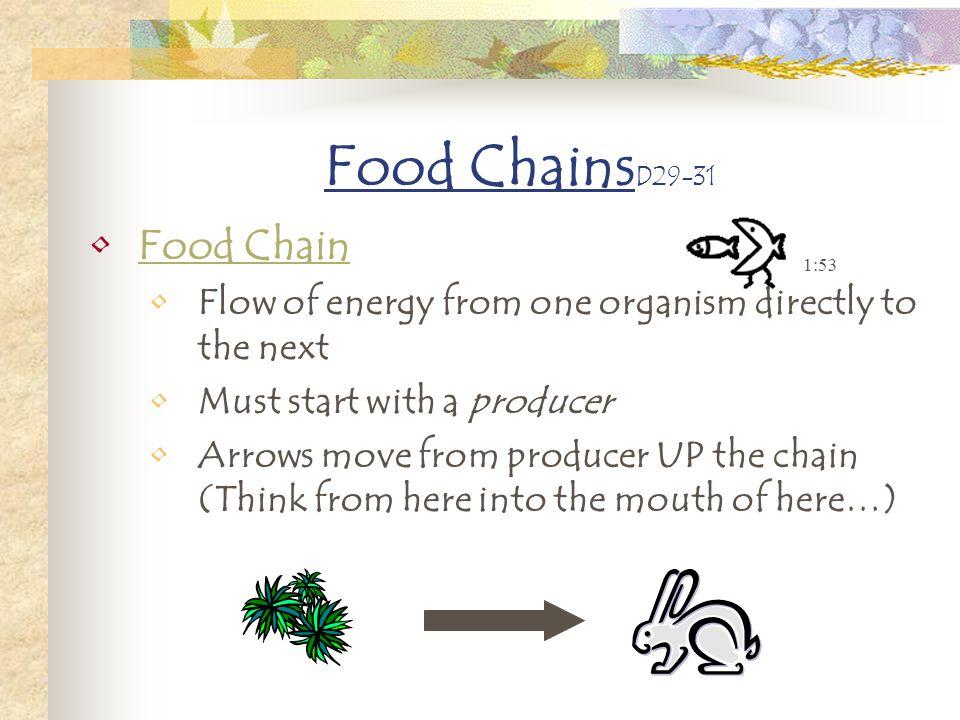 Food ChainsD29-31 Food Chain