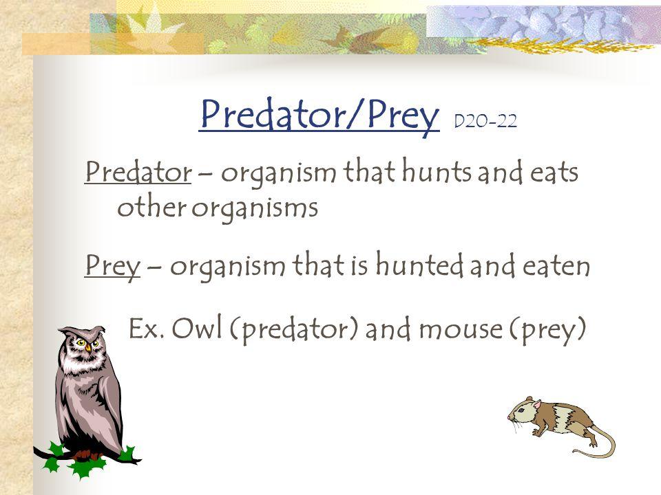 Ex. Owl (predator) and mouse (prey)