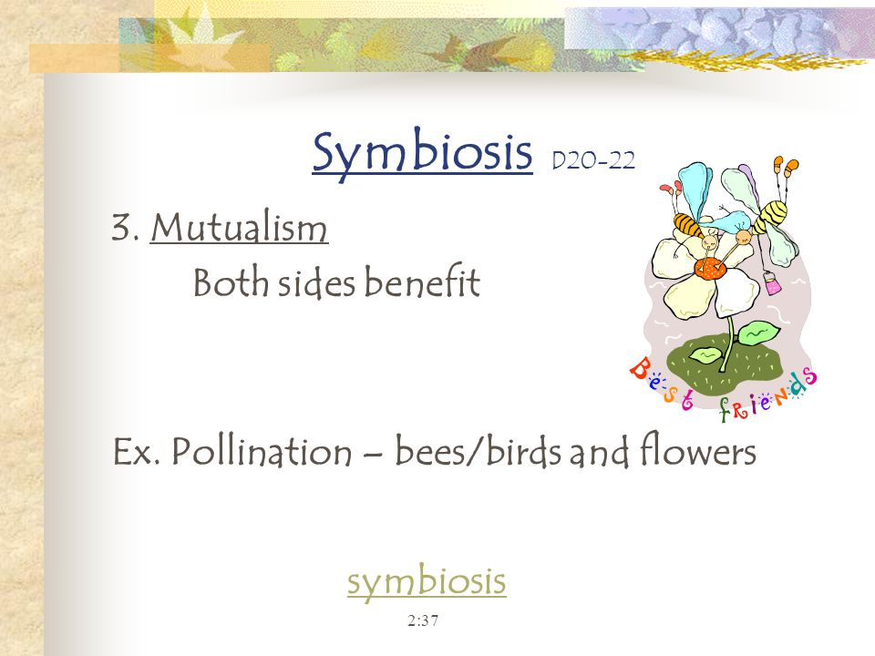 Symbiosis D20-22 3. Mutualism Both sides benefit