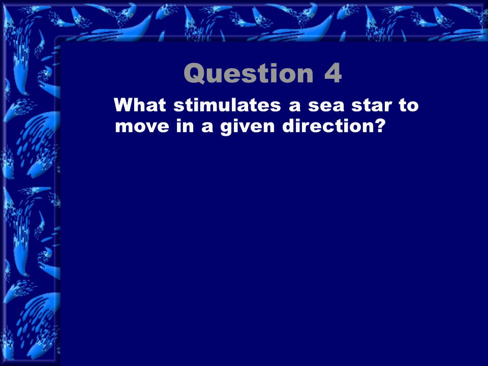 Question 4 What stimulates a sea star to move in a given direction