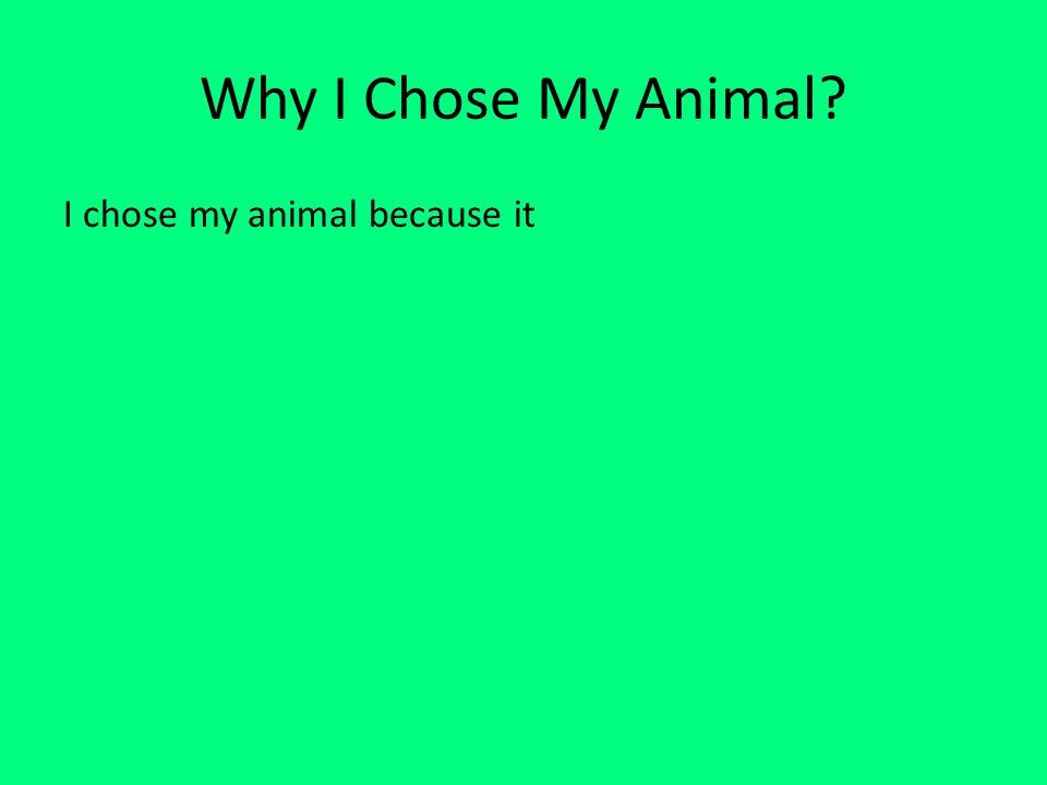 Why I Chose My Animal I chose my animal because it