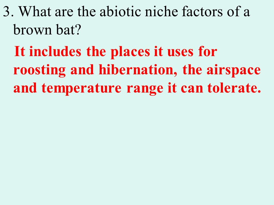 3. What are the abiotic niche factors of a brown bat