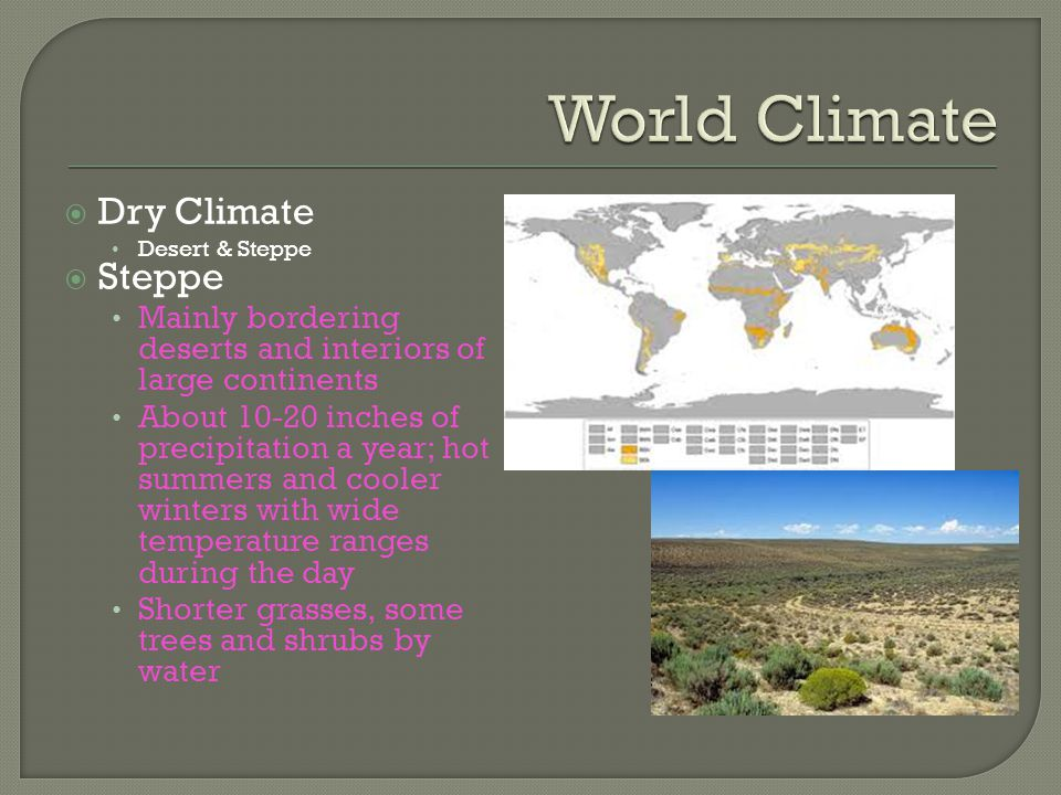 World Climate Dry Climate Steppe