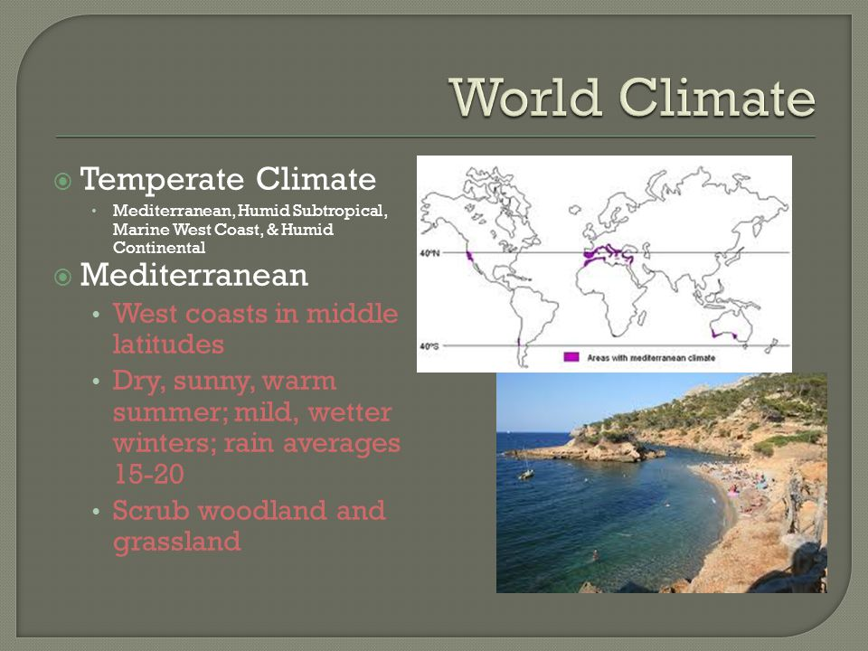 World Climate Temperate Climate Mediterranean