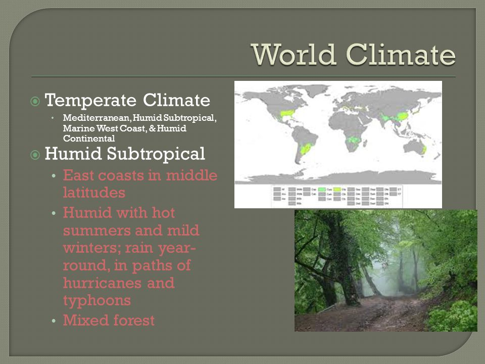 World Climate Temperate Climate Humid Subtropical