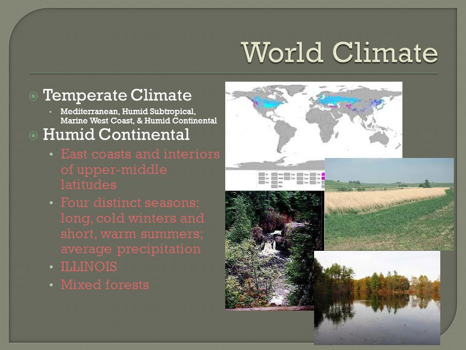 World Climate Temperate Climate Humid Continental