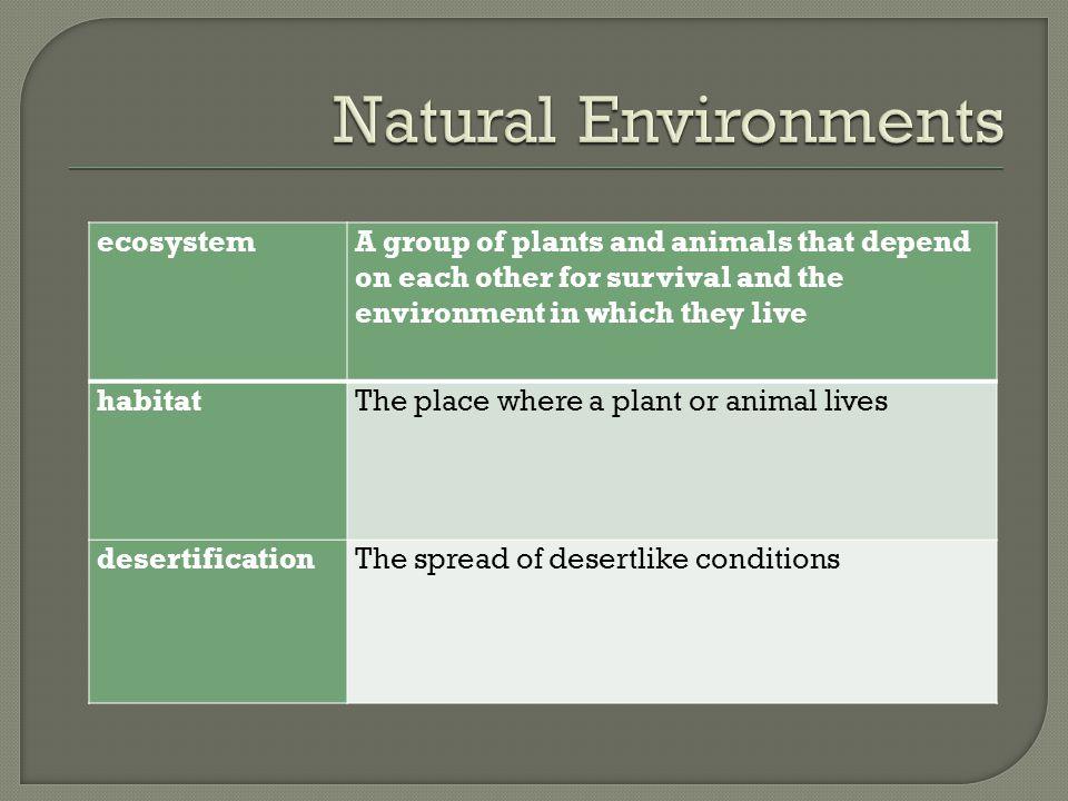 Natural Environments ecosystem