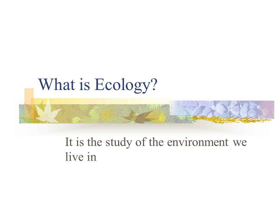 It is the study of the environment we live in