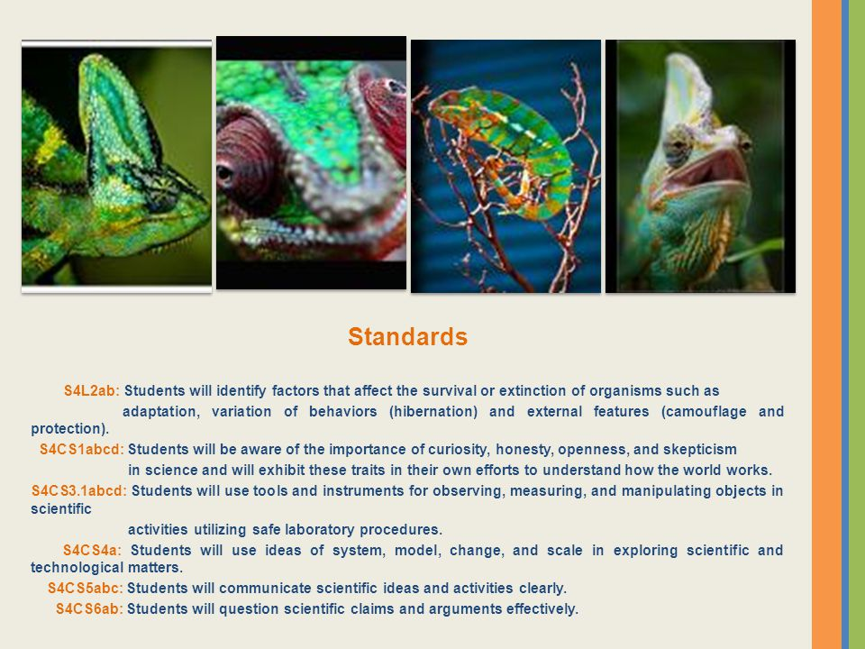 Standards S4L2ab: Students will identify factors that affect the survival or extinction of organisms such as.