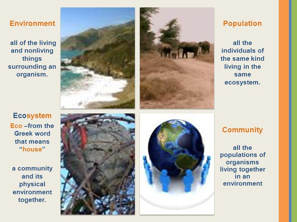 Environment Population Ecosystem Community