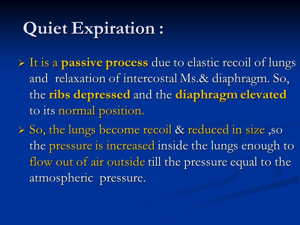 Quiet Expiration :