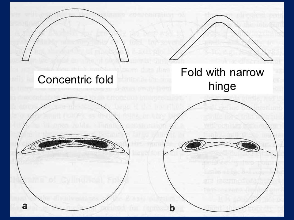 Fold with narrow hinge Concentric fold