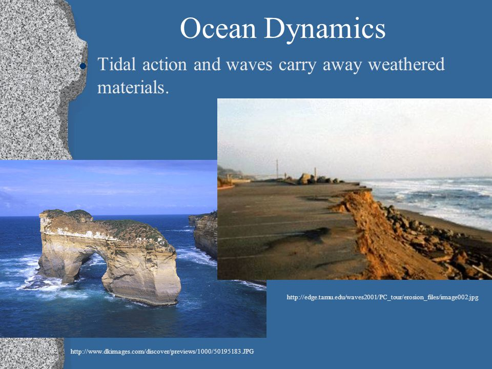 Ocean Dynamics Tidal action and waves carry away weathered materials.