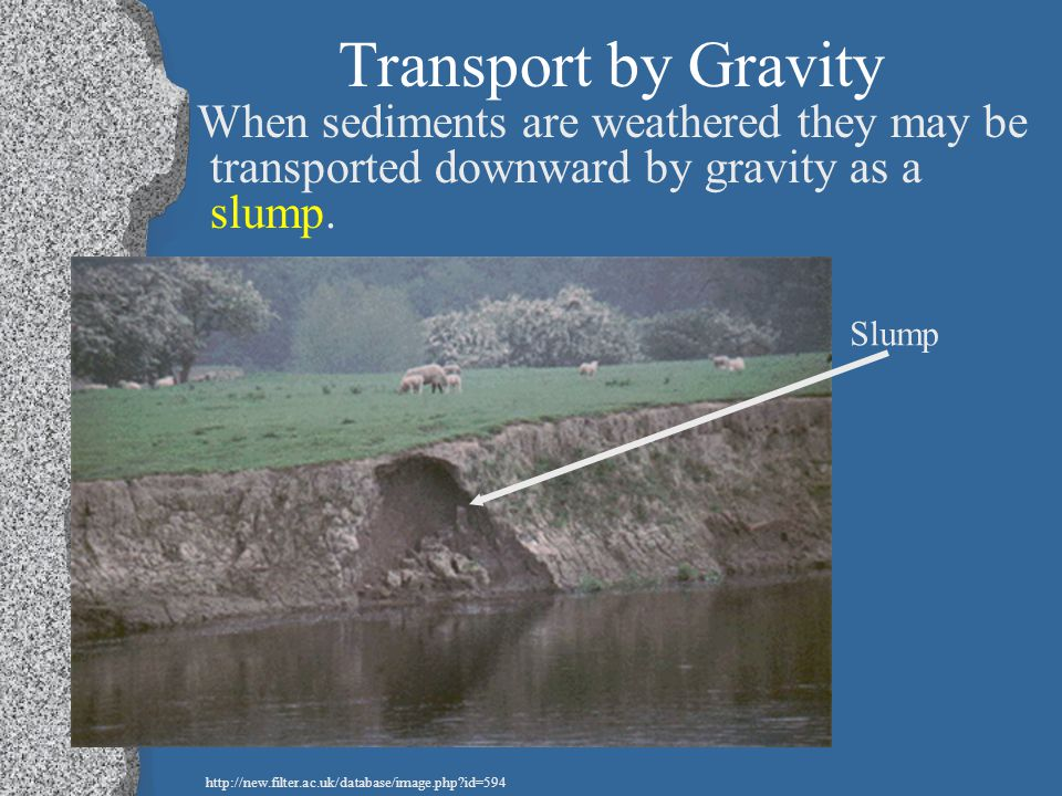 Transport by Gravity When sediments are weathered they may be transported downward by gravity as a slump.